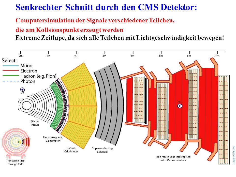 Senkrechter Schnitt durch den CMS Detektor: Computersimulation der Signale verschiedener Teilchen, die am Kollsionspunkt erzeugt werden Extreme Zeitlu