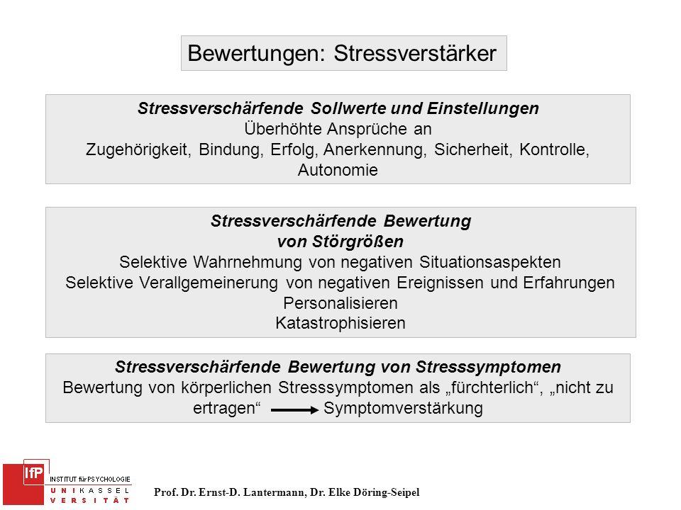 Prof. Dr. Ernst-D. Lantermann, Dr. Elke Döring-Seipel Bewertungen: Stressverstärker Stressverschärfende Sollwerte und Einstellungen Überhöhte Ansprüch