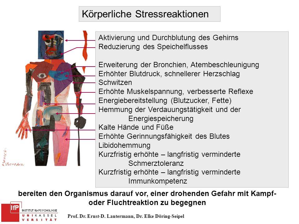 Prof. Dr. Ernst-D. Lantermann, Dr. Elke Döring-Seipel Körperliche Stressreaktionen Aktivierung und Durchblutung des Gehirns Reduzierung des Speichelfl