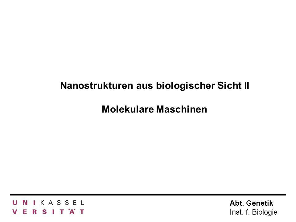 Abt. Genetik Inst. f. Biologie Nanostrukturen aus biologischer Sicht II Molekulare Maschinen