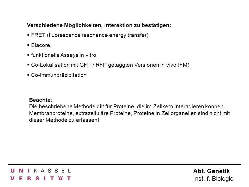 Abt. Genetik Inst. f. Biologie Verschiedene Möglichkeiten, Interaktion zu bestätigen: FRET (fluorescence resonance energy transfer), Biacore, funktion