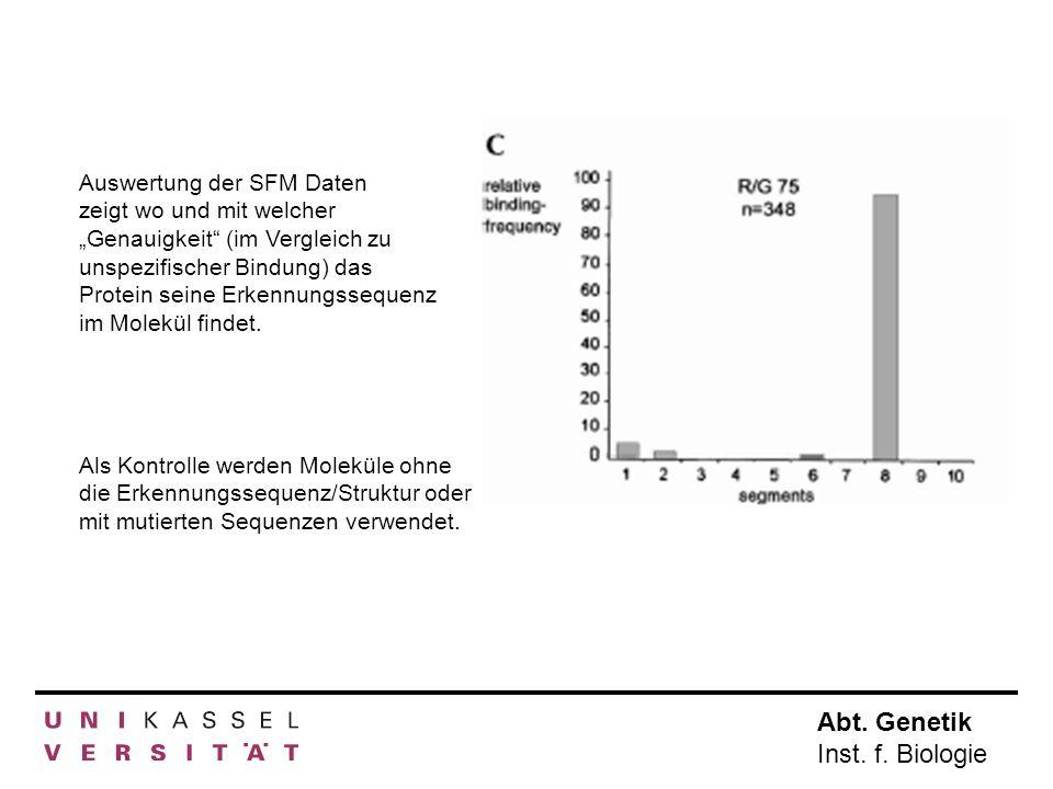 Abt. Genetik Inst. f. Biologie Auswertung der SFM Daten zeigt wo und mit welcher Genauigkeit (im Vergleich zu unspezifischer Bindung) das Protein sein