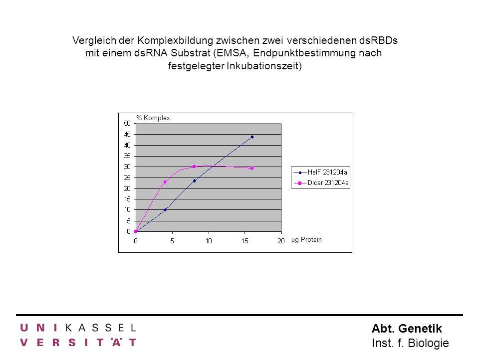 Abt. Genetik Inst. f. Biologie µg Protein % Komplex Vergleich der Komplexbildung zwischen zwei verschiedenen dsRBDs mit einem dsRNA Substrat (EMSA, En
