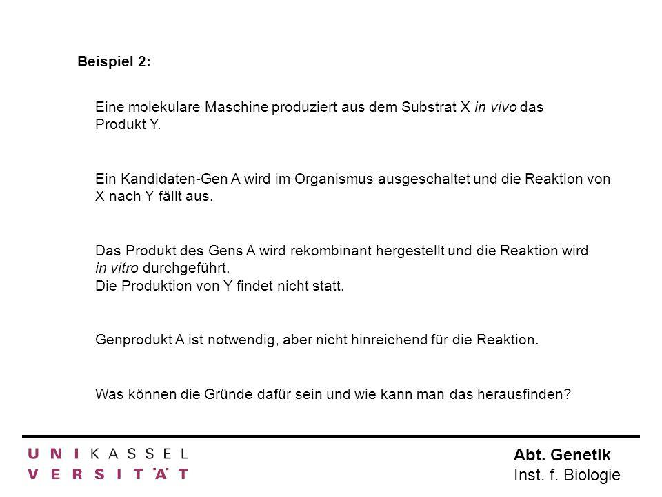 Abt.Genetik Inst. f. Biologie Molekülmitte. Bestimmung der Bindungsstelle mit SFM.