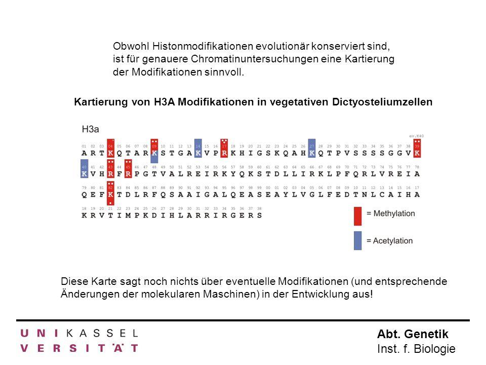 Obwohl Histonmodifikationen evolutionär konserviert sind, ist für genauere Chromatinuntersuchungen eine Kartierung der Modifikationen sinnvoll. Kartie