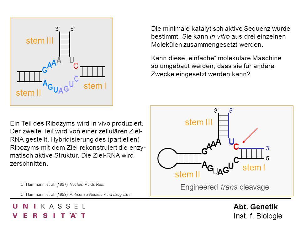 Abt. Genetik Inst. f. Biologie Kann diese einfache molekulare Maschine so umgebaut werden, dass sie für andere Zwecke eingesetzt werden kann? A A A A