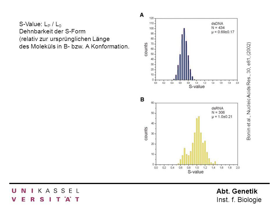 Abt. Genetik Inst. f. Biologie S-Value: L P / L 0 Dehnbarkeit der S-Form (relativ zur ursprünglichen Länge des Moleküls in B- bzw. A Konformation. Bon