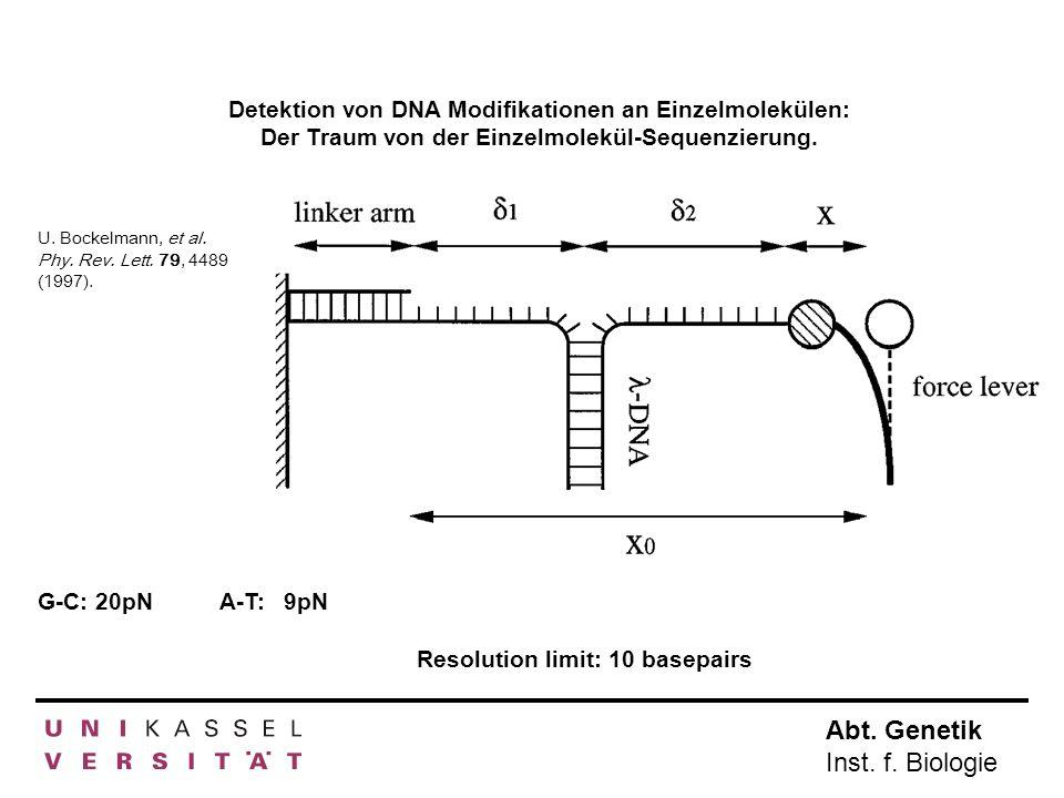 Abt. Genetik Inst. f. Biologie Detektion von DNA Modifikationen an Einzelmolekülen: Der Traum von der Einzelmolekül-Sequenzierung. U. Bockelmann, et a