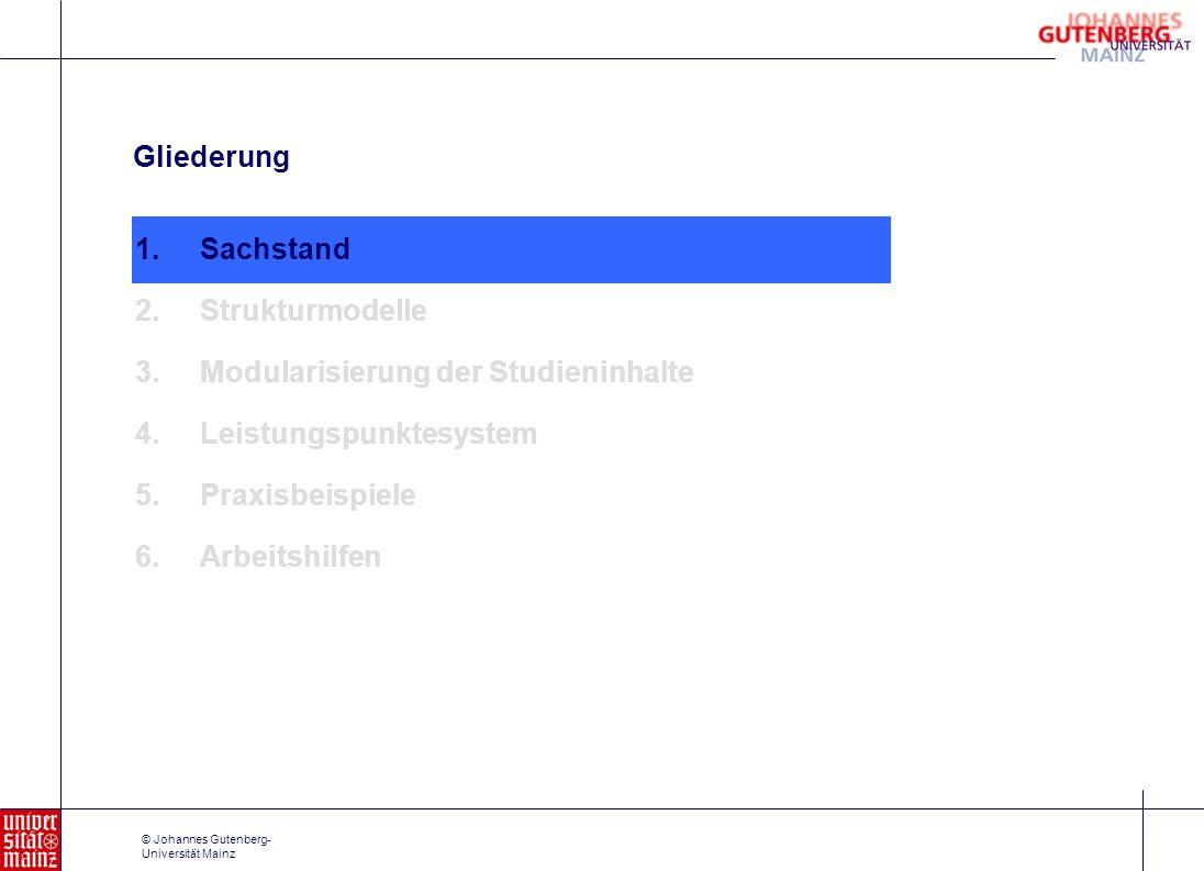 © Johannes Gutenberg- Universität Mainz Auszug aus der Musterprüfungsordnung I.