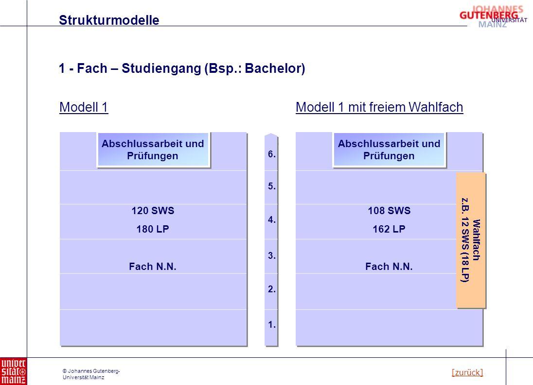 © Johannes Gutenberg- Universität Mainz 1 - Fach – Studiengang (Bsp.: Bachelor) Strukturmodelle [zurück] 120 SWS 180 LP Fach N.N. Abschlussarbeit und