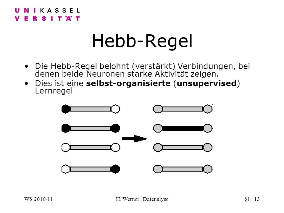 WS 2010/11H. Werner : Datenalyse§1 : 13 Hebb-Regel Die Hebb-Regel belohnt (verstärkt) Verbindungen, bei denen beide Neuronen starke Aktivität zeigen.