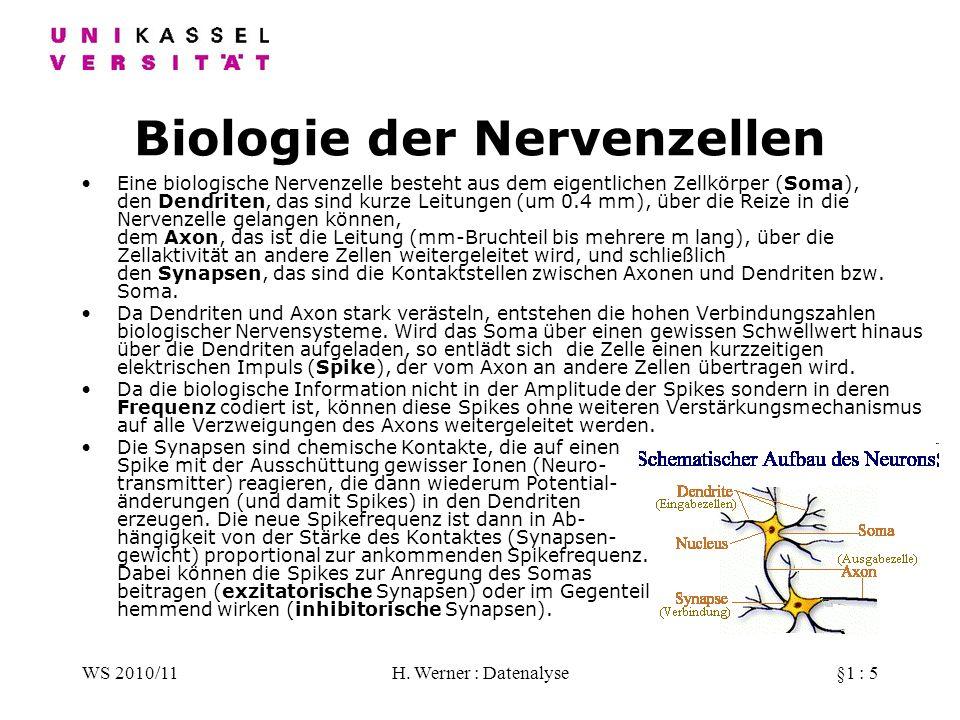 WS 2010/11H. Werner : Datenalyse§1 : 5 Biologie der Nervenzellen Eine biologische Nervenzelle besteht aus dem eigentlichen Zellkörper (Soma), den Dend