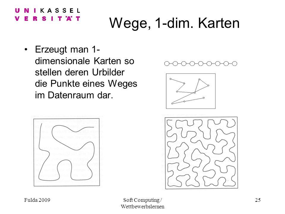 Fulda 2009Soft Computing / Wettbewerbslernen 25 Wege, 1-dim.
