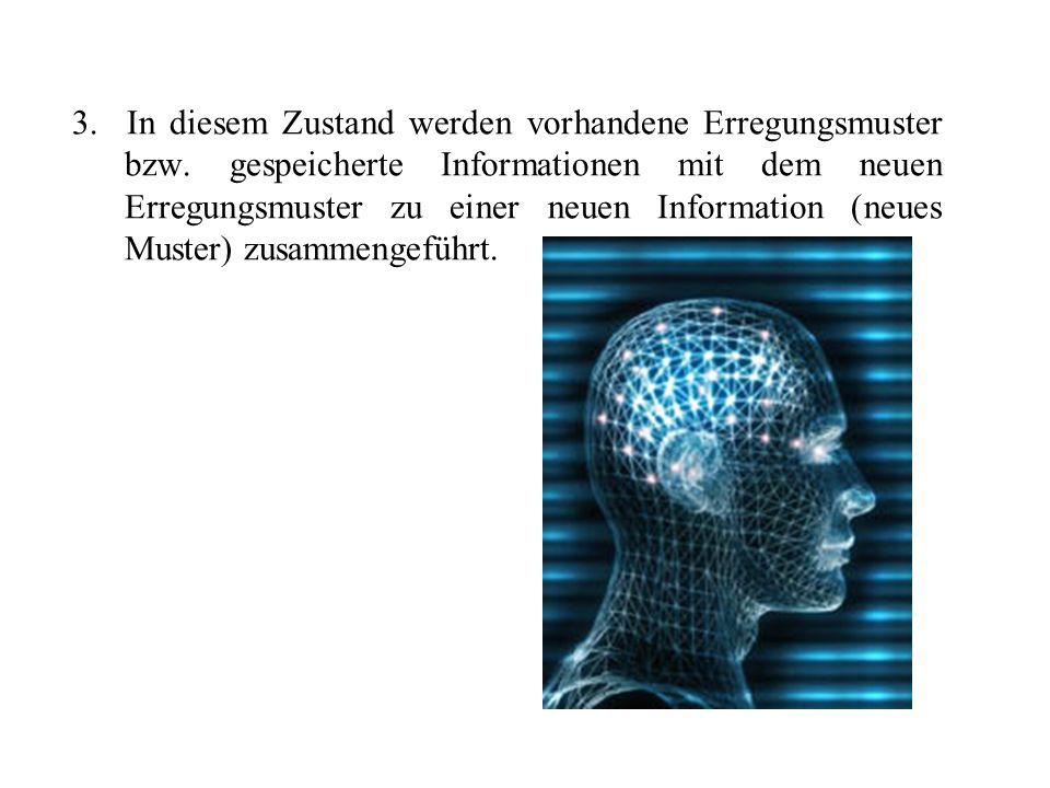 3. In diesem Zustand werden vorhandene Erregungsmuster bzw. gespeicherte Informationen mit dem neuen Erregungsmuster zu einer neuen Information (neues
