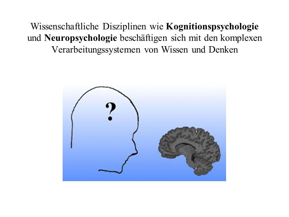 Wissenschaftliche Disziplinen wie Kognitionspsychologie und Neuropsychologie beschäftigen sich mit den komplexen Verarbeitungssystemen von Wissen und