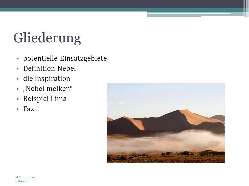Gliederung potentielle Einsatzgebiete Definition Nebel die Inspiration Nebel melken Beispiel Lima Fazit M.M.Bollmann, F.Herwig