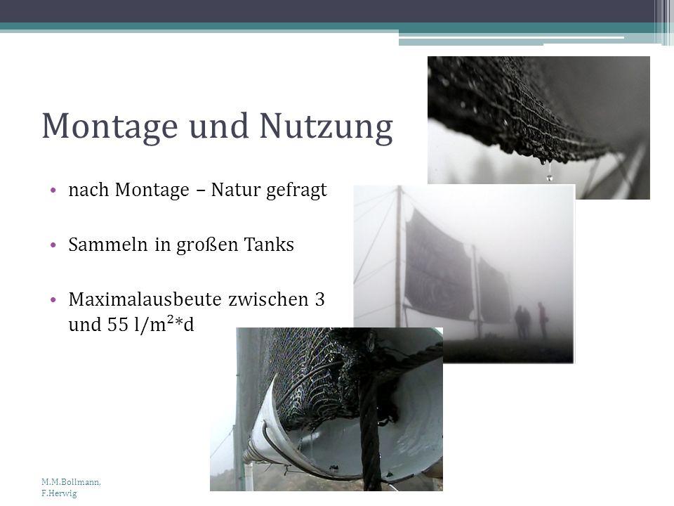 Montage und Nutzung nach Montage – Natur gefragt Sammeln in großen Tanks Maximalausbeute zwischen 3 und 55 l/m²*d M.M.Bollmann, F.Herwig