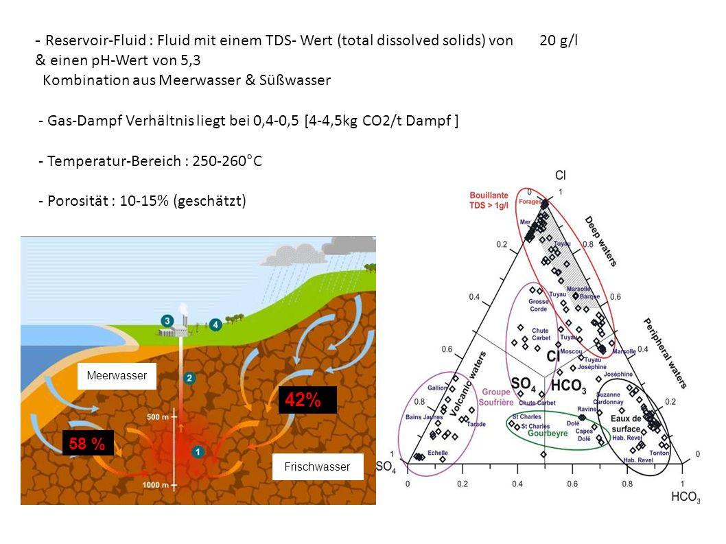 - Reservoir-Fluid : Fluid mit einem TDS- Wert (total dissolved solids) von 20 g/l & einen pH-Wert von 5,3 Kombination aus Meerwasser & Süßwasser - Gas