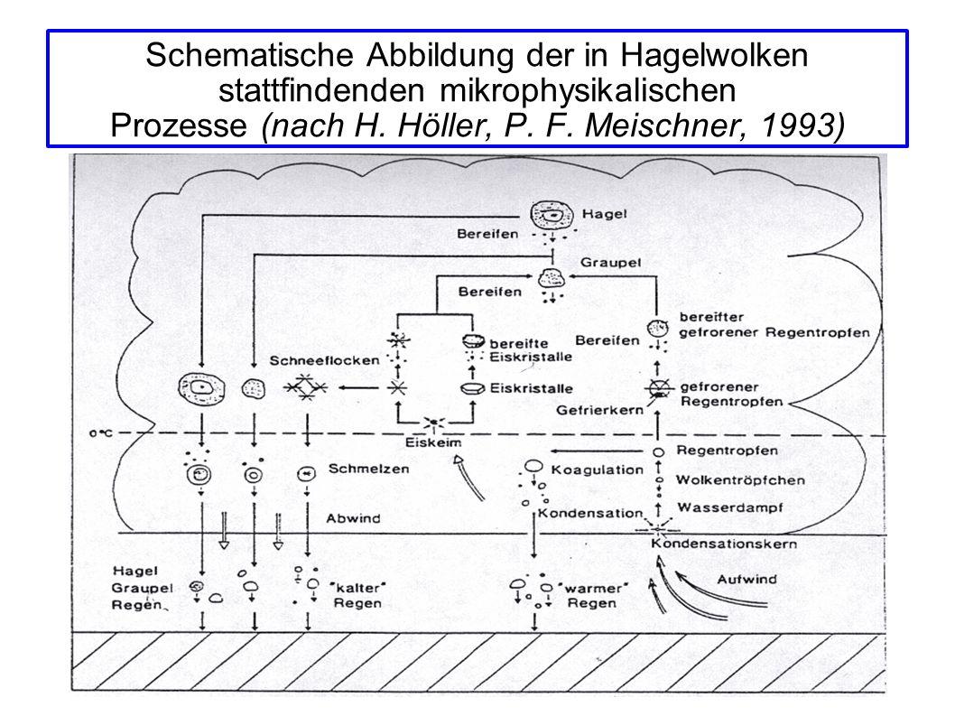 Schematische Abbildung der in Hagelwolken stattfindenden mikrophysikalischen Prozesse (nach H. Höller, P. F. Meischner, 1993)