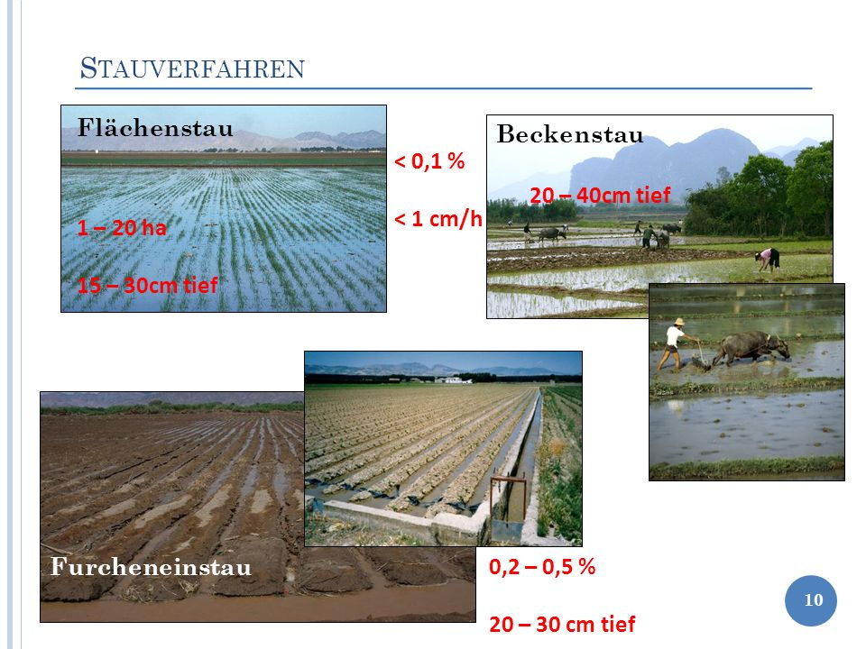 S TAUVERFAHREN 10 Flächenstau Beckenstau Furcheneinstau < 0,1 % < 1 cm/h 1 – 20 ha 15 – 30cm tief 20 – 40cm tief 0,2 – 0,5 % 20 – 30 cm tief