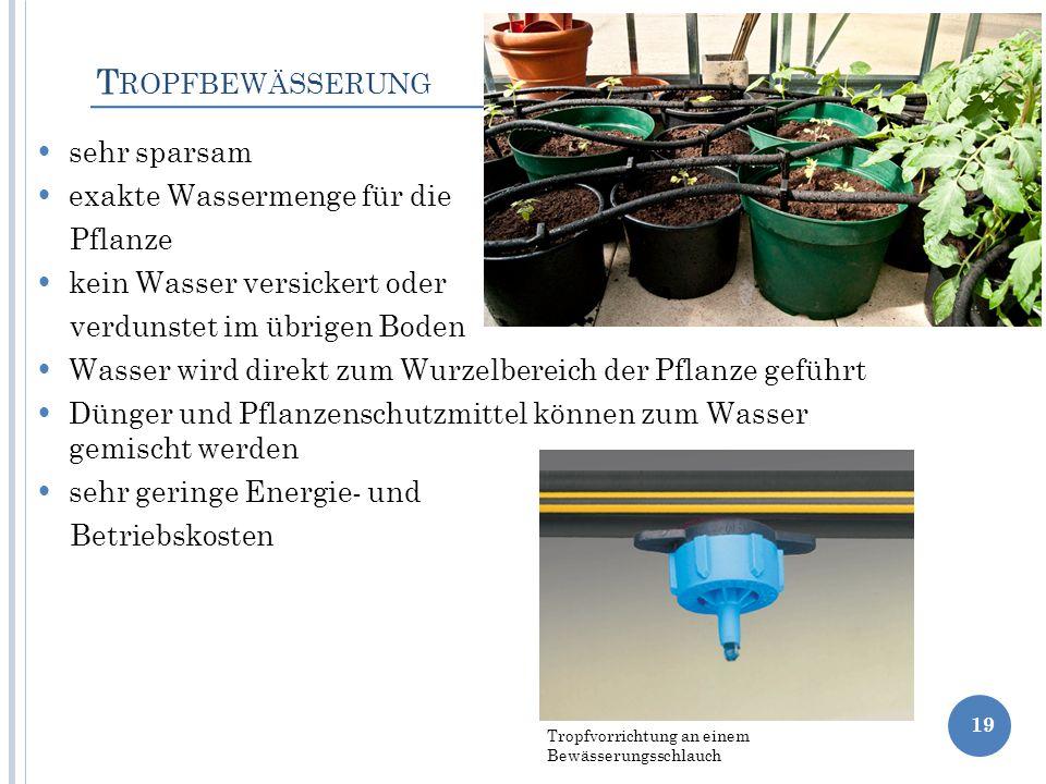 sehr sparsam exakte Wassermenge für die Pflanze kein Wasser versickert oder verdunstet im übrigen Boden Wasser wird direkt zum Wurzelbereich der Pflan