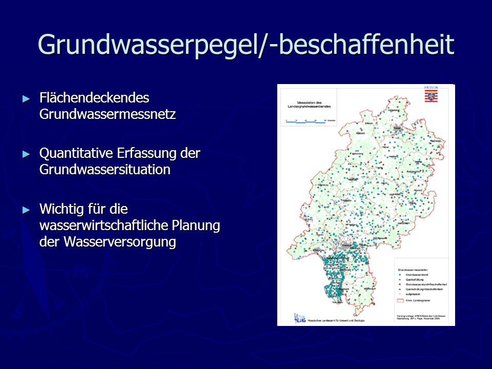 Grundwasserpegel/-beschaffenheit Flächendeckendes Grundwassermessnetz Flächendeckendes Grundwassermessnetz Quantitative Erfassung der Grundwassersitua