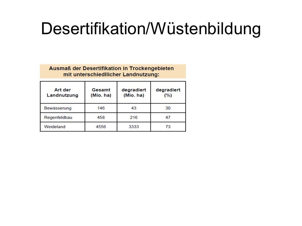 Desertifikation/Wüstenbildung