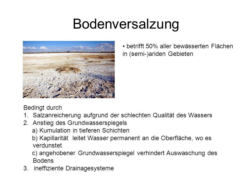 Bodenversalzung betrifft 50% aller bewässerten Flächen in (semi-)ariden Gebieten Bedingt durch 1.Salzanreicherung aufgrund der schlechten Qualität des