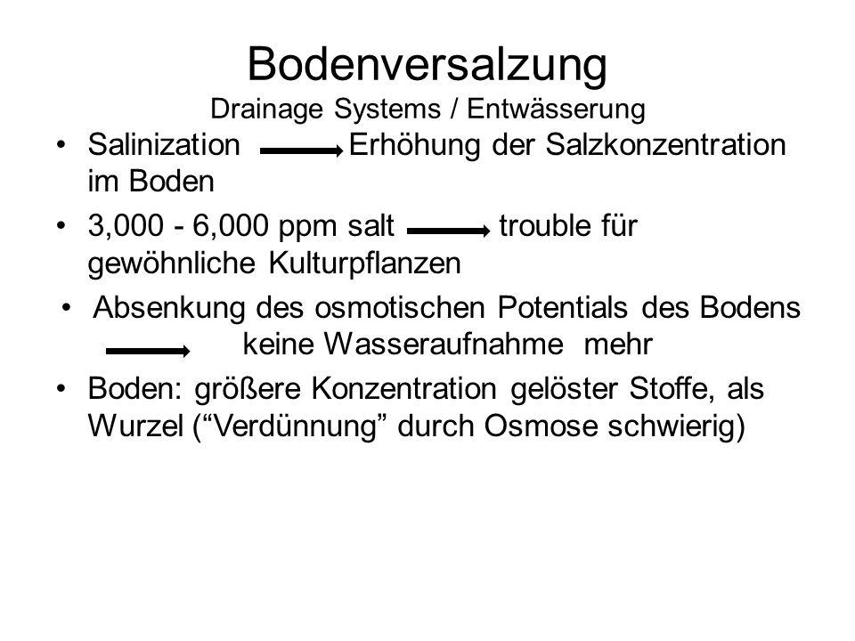 Bodenversalzung Drainage Systems / Entwässerung Salinization Erhöhung der Salzkonzentration im Boden 3,000 - 6,000 ppm salt trouble für gewöhnliche Ku