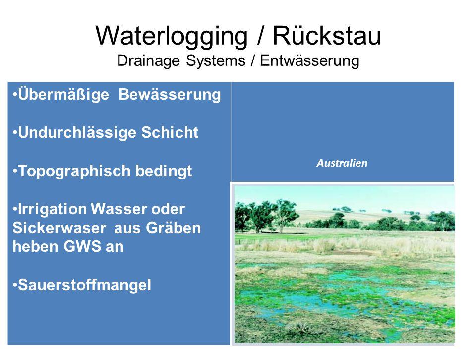 Waterlogging / Rückstau Drainage Systems / Entwässerung Übermäßige Bewässerung Undurchlässige Schicht Topographisch bedingt Irrigation Wasser oder Sic