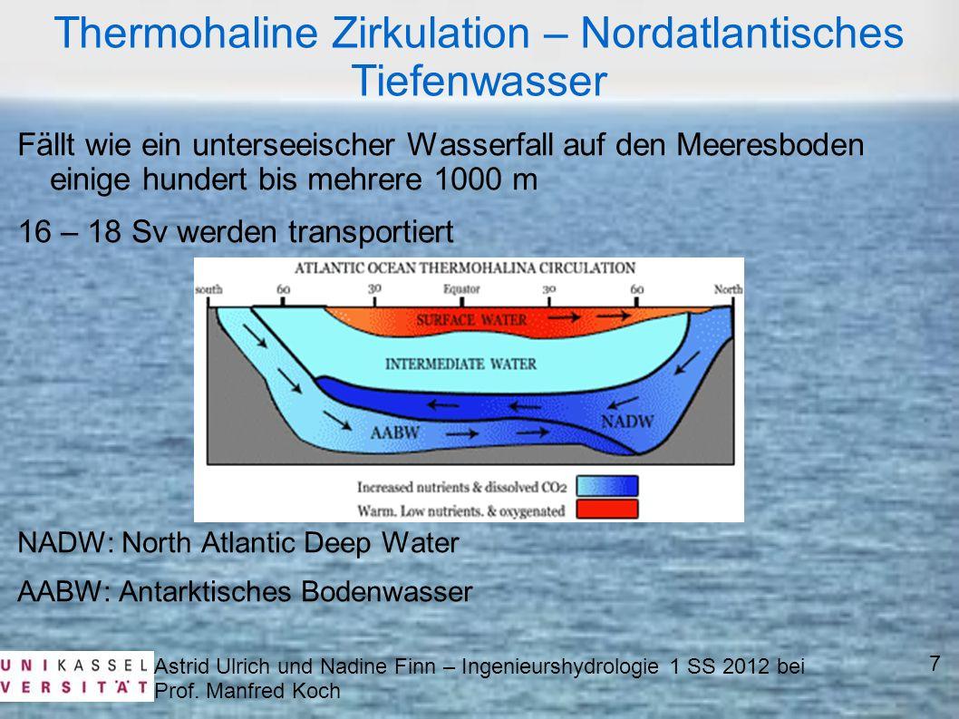Astrid Ulrich und Nadine Finn – Ingenieurshydrologie 1 SS 2012 bei Prof. Manfred Koch Thermohaline Zirkulation – Nordatlantisches Tiefenwasser Fällt w