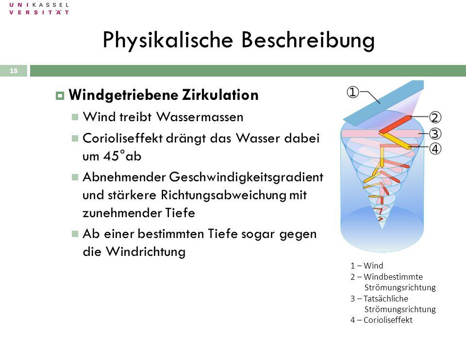 Physikalische Beschreibung 28.09.2010 Windgetriebene Zirkulation Wind treibt Wassermassen Corioliseffekt drängt das Wasser dabei um 45°ab Abnehmender