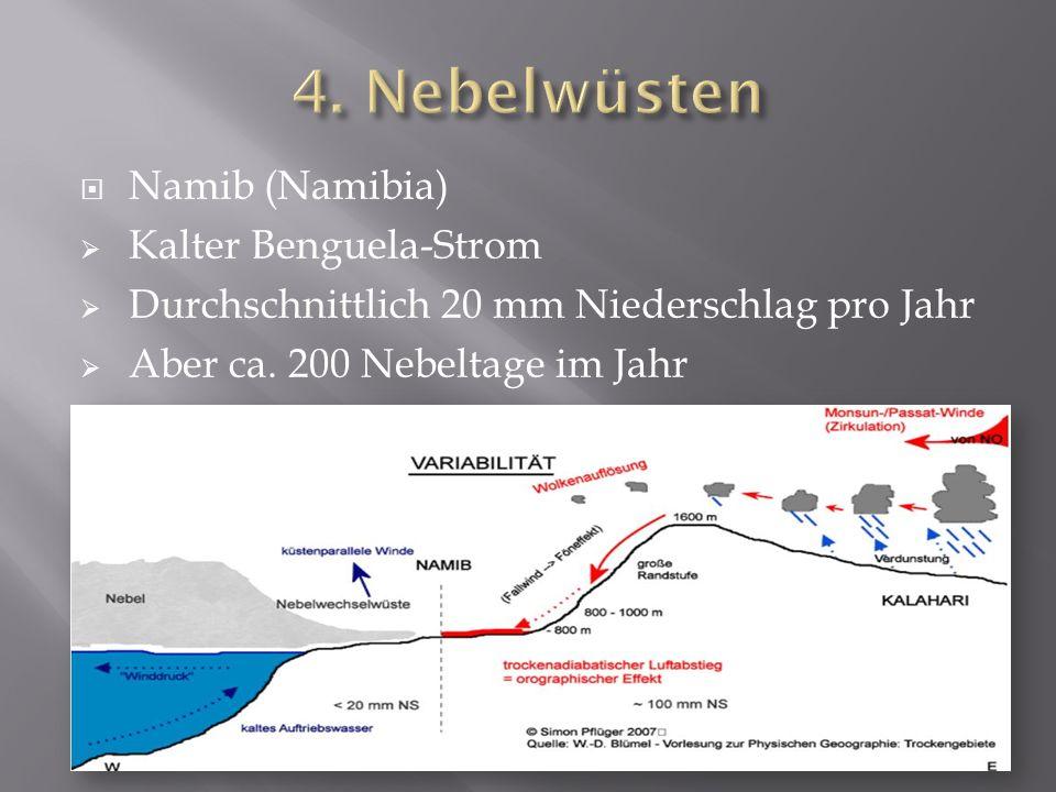 Namib (Namibia) Kalter Benguela-Strom Durchschnittlich 20 mm Niederschlag pro Jahr Aber ca. 200 Nebeltage im Jahr