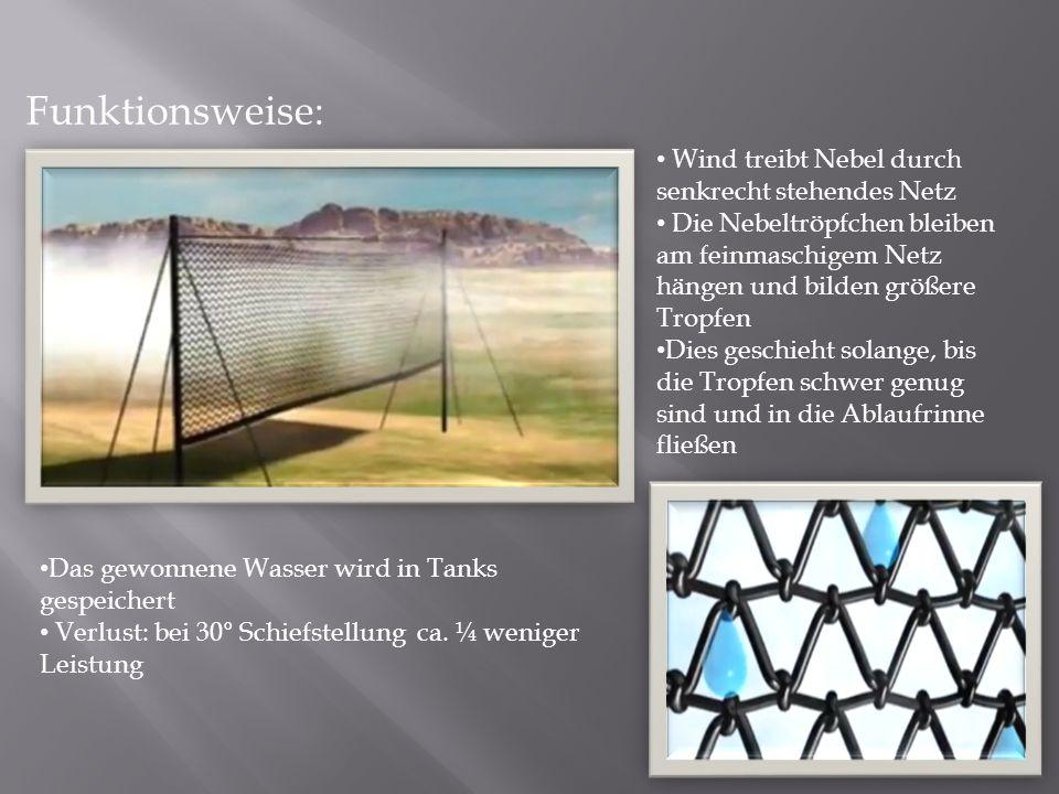 Funktionsweise: Wind treibt Nebel durch senkrecht stehendes Netz Die Nebeltröpfchen bleiben am feinmaschigem Netz hängen und bilden größere Tropfen Di