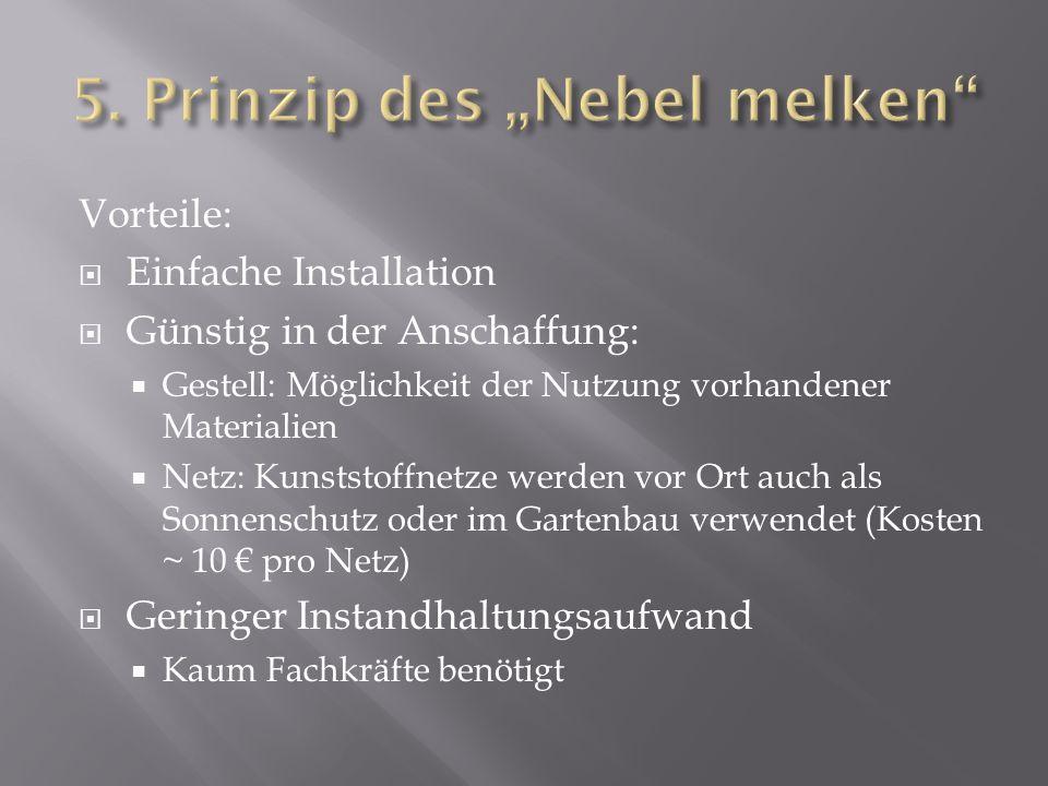 Vorteile: Einfache Installation Günstig in der Anschaffung: Gestell: Möglichkeit der Nutzung vorhandener Materialien Netz: Kunststoffnetze werden vor