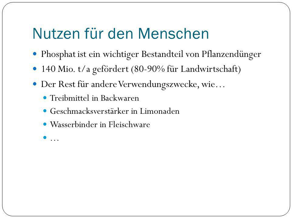 Nutzen für den Menschen Phosphat ist ein wichtiger Bestandteil von Pflanzendünger 140 Mio. t/a gefördert (80-90% für Landwirtschaft) Der Rest für ande