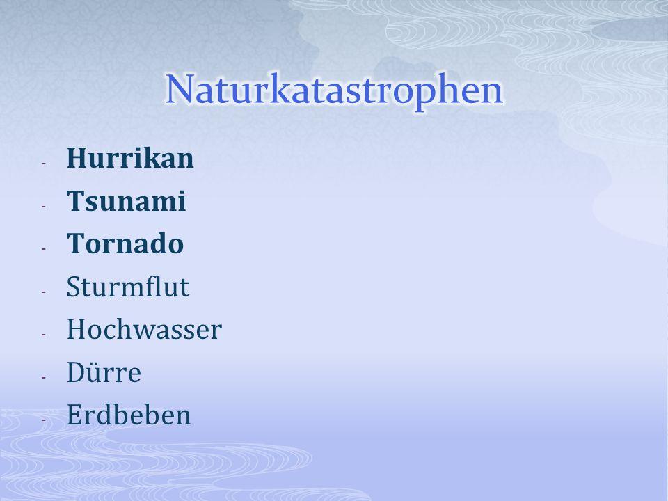 - Hurrikan - Tsunami - Tornado - Sturmflut - Hochwasser - Dürre - Erdbeben