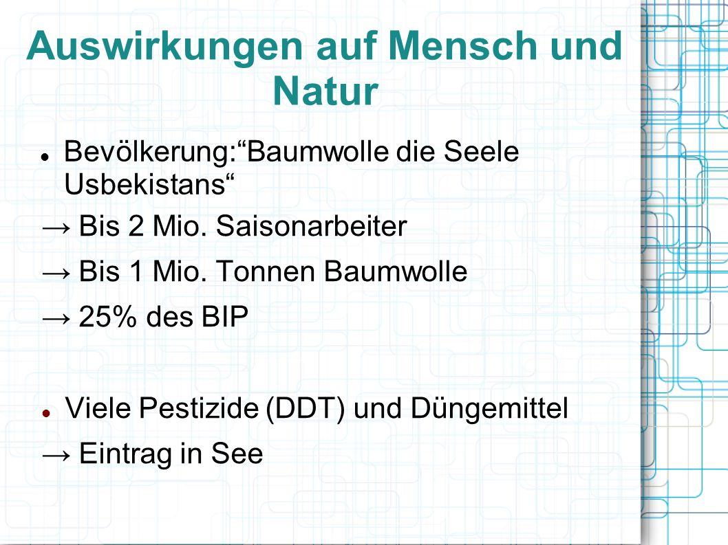 Auswirkungen auf Mensch und Natur Bis 2 Mio. Saisonarbeiter Bis 1 Mio. Tonnen Baumwolle 25% des BIP Viele Pestizide (DDT) und Düngemittel Eintrag in S