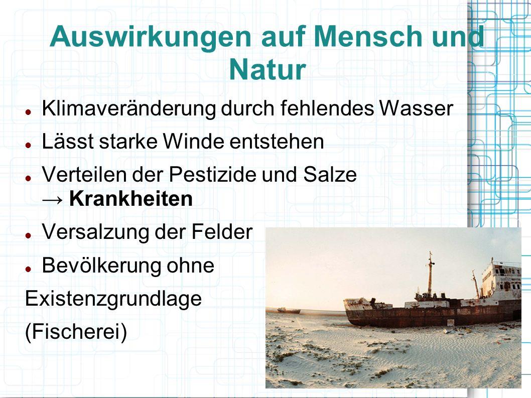 Auswirkungen auf Mensch und Natur Klimaveränderung durch fehlendes Wasser Lässt starke Winde entstehen Verteilen der Pestizide und Salze Krankheiten V