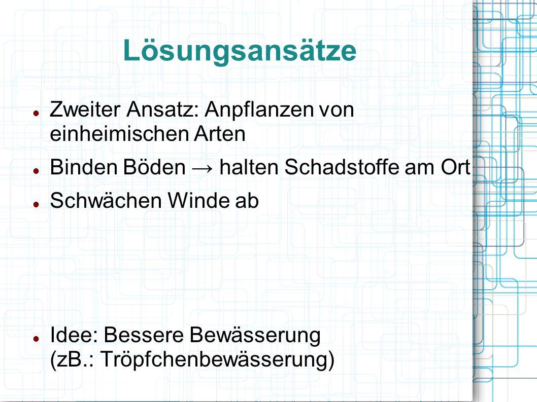Lösungsansätze Zweiter Ansatz: Anpflanzen von einheimischen Arten Binden Böden halten Schadstoffe am Ort Schwächen Winde ab Idee: Bessere Bewässerung