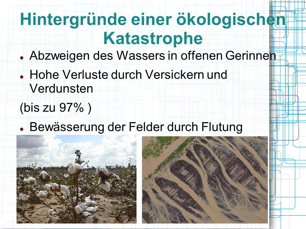 Hintergründe einer ökologischen Katastrophe Abzweigen des Wassers in offenen Gerinnen Hohe Verluste durch Versickern und Verdunsten (bis zu 97% ) Bewä