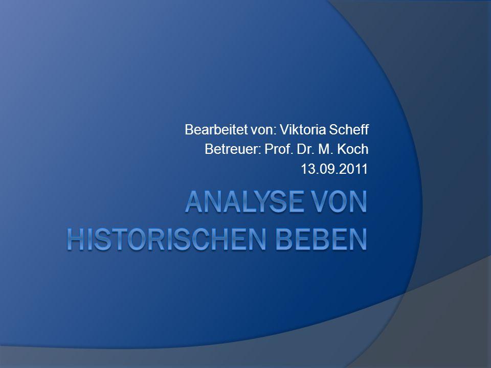 Bearbeitet von: Viktoria Scheff Betreuer: Prof. Dr. M. Koch 13.09.2011