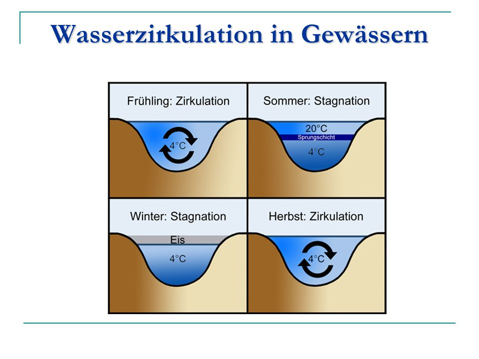 Wasserzirkulation in Gewässern