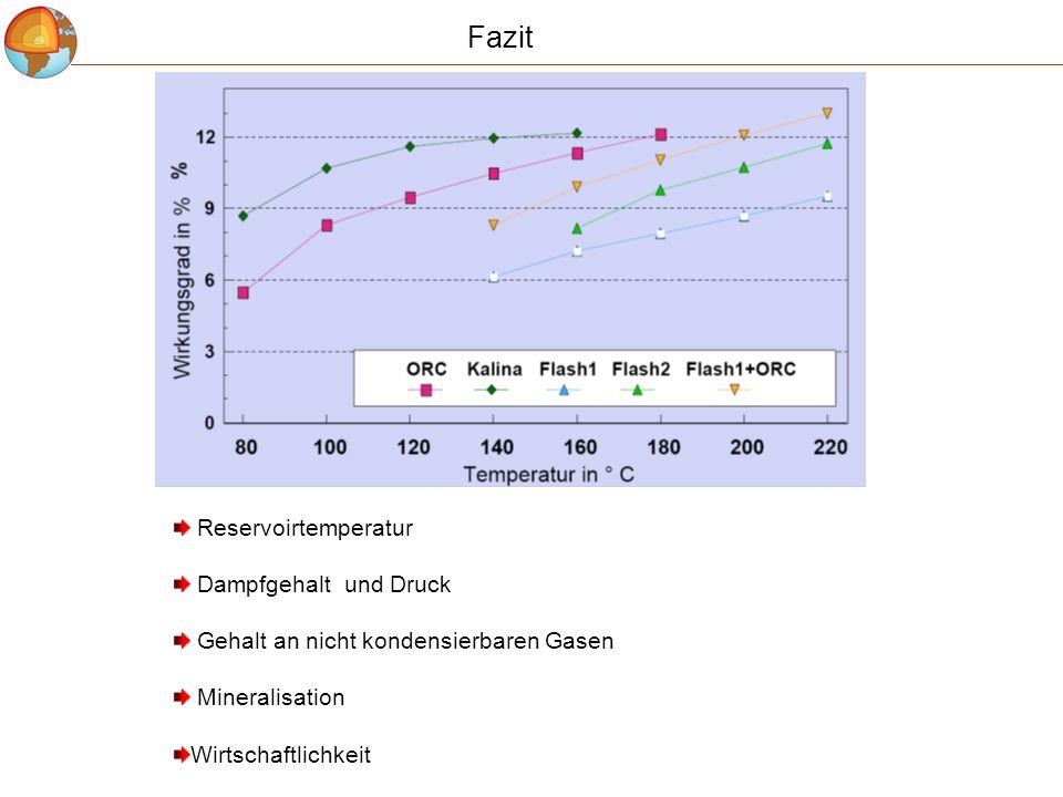 Fazit Reservoirtemperatur Dampfgehalt und Druck Gehalt an nicht kondensierbaren Gasen Mineralisation Wirtschaftlichkeit
