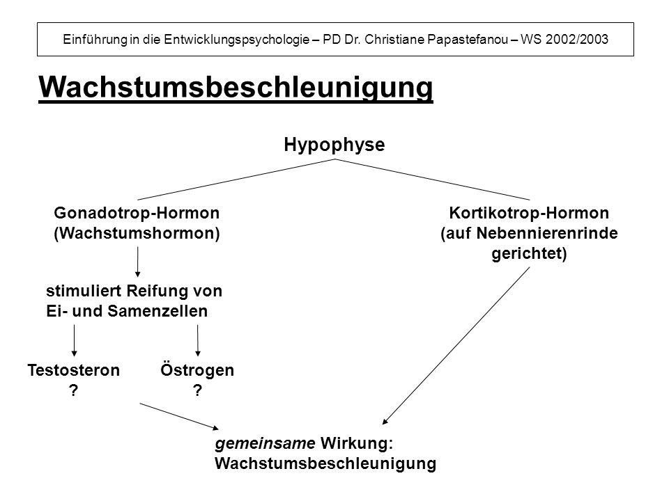 Einführung in die Entwicklungspsychologie – PD Dr. Christiane Papastefanou – WS 2002/2003 Wachstumsbeschleunigung Gonadotrop-Hormon (Wachstumshormon)