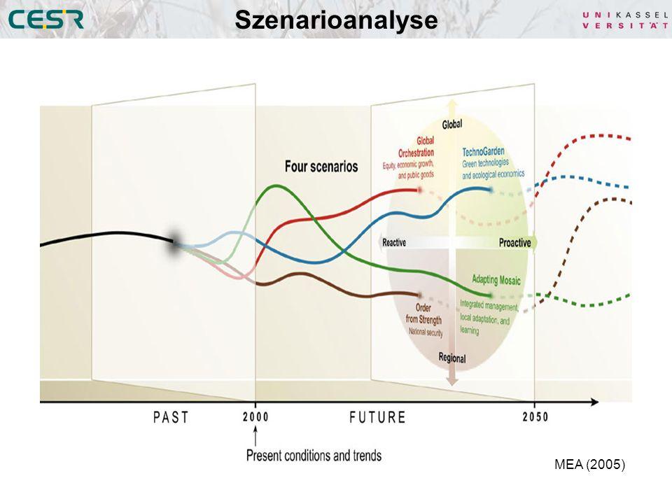 Szenarioanalyse MEA (2005)