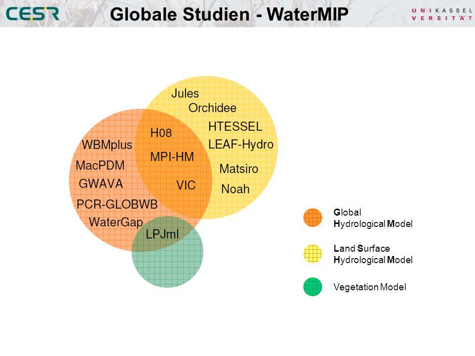 Globale Studien - WaterMIP Global Hydrological Model Land Surface Hydrological Model Vegetation Model