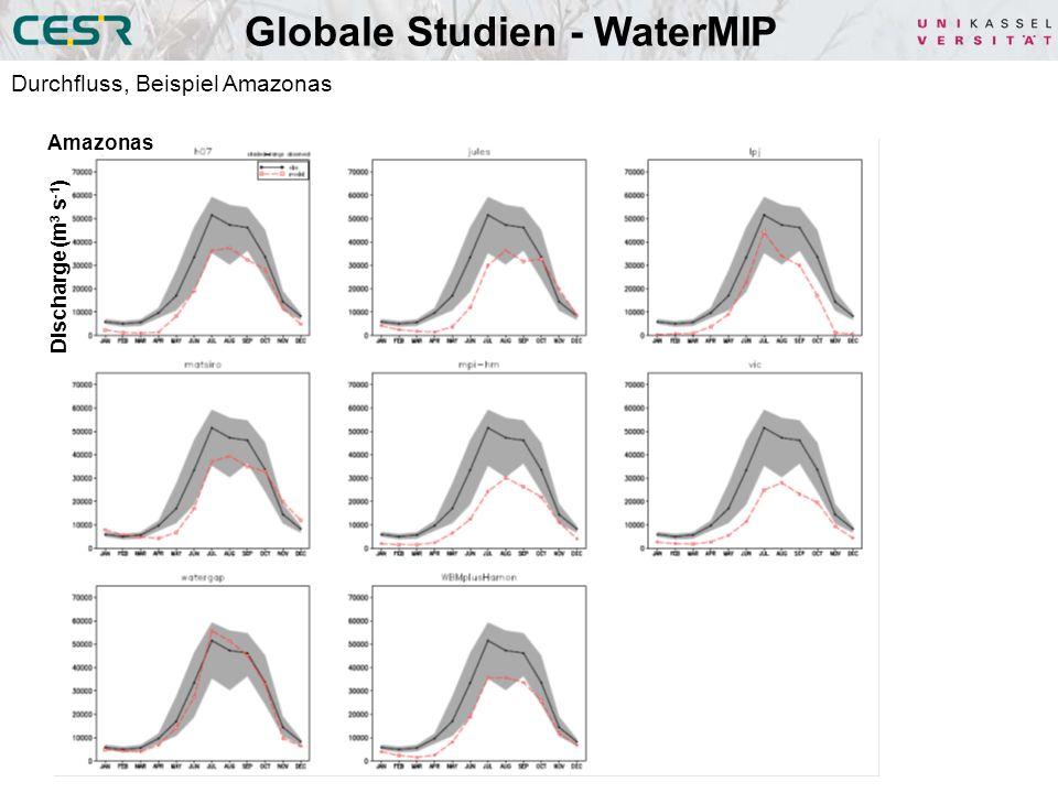 Globale Studien - WaterMIP Durchfluss, Beispiel Amazonas Amazonas Discharge (m 3 s -1 )