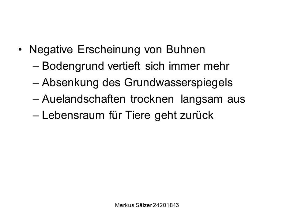 Markus Sälzer 24201843 Negative Erscheinung von Buhnen –Bodengrund vertieft sich immer mehr –Absenkung des Grundwasserspiegels –Auelandschaften trockn