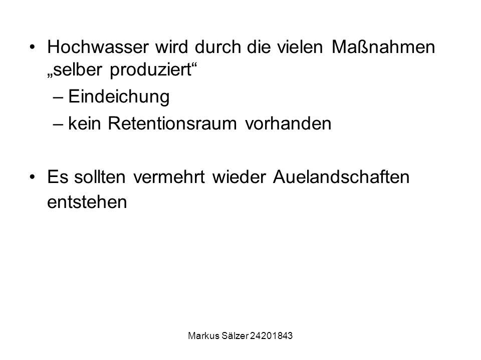 Markus Sälzer 24201843 Hochwasser wird durch die vielen Maßnahmen selber produziert –Eindeichung –kein Retentionsraum vorhanden Es sollten vermehrt wi